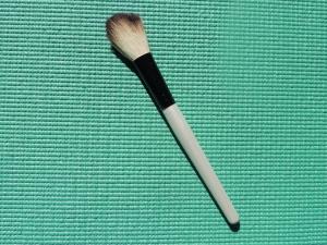 blush or bronzer brush