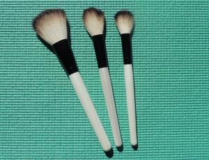powder, blush and foundation brushes